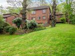 Thumbnail for sale in Lucknow Drive, Mapperley Park, Nottingham, Nottinghamshire