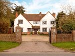 Thumbnail for sale in Waltham Road, White Waltham, Maidenhead, Berkshire