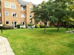 Thumbnail to rent in Dacre Street, Morpeth