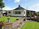 Thumbnail to rent in Bridgerule, Holsworthy