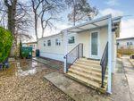 Thumbnail to rent in Trowbridge Lodge Park, Hilperton, Trowbridge