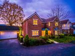 Thumbnail to rent in Woodfield Close, Preston