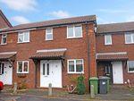 Thumbnail to rent in Pine Road, Four Marks, Alton