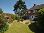 Thumbnail to rent in Woodhurst, Letchworth