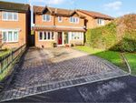 Thumbnail for sale in Crummock Road, Chandlers Ford, Eastleigh