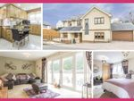 Thumbnail for sale in Yew Tree Lane, Caerleon, Newport