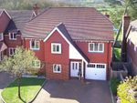 Thumbnail for sale in Linfield Lane, Ashington, Pulborough