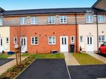 Thumbnail to rent in Maple Leaf Close, Preston