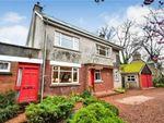 Thumbnail to rent in Rannes Street, Insch, Aberdeenshire