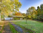 Thumbnail to rent in Cartwright Gardens, Aynho, Banbury