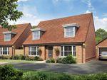 "Thumbnail to rent in ""Warbington"" at Chalton Lane, Clanfield, Waterlooville"