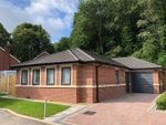 Thumbnail to rent in Priory Road, Newcastle-Under-Lyme