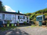 Thumbnail for sale in Meadow Park, Dart Bridge Road, Buckfastleigh, Devon