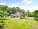 Thumbnail for sale in Hophurst Hill, Crawley Down, Crawley, West Sussex