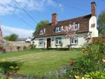 Thumbnail for sale in Mill Lane, Pebmarsh, Halstead