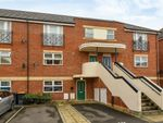 Thumbnail to rent in Palgrave Road, Bedford
