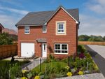 "Thumbnail to rent in ""Ripon"" at Morgan Drive, Whitworth, Spennymoor"