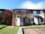 Thumbnail to rent in Petersham Drive, Orpington
