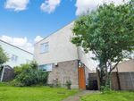 Thumbnail to rent in Birch Close, Braintree