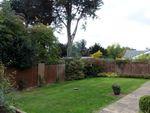 Thumbnail to rent in Aldergrove Close, Halesworth, Suffolk