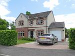 Thumbnail to rent in Larghan View, Coupar Angus