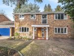 Thumbnail to rent in Elm Road, Woking