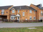 Thumbnail for sale in Redshank Way, Hampton Vale, Peterborough