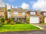 Thumbnail for sale in Hepplewhite Close, Baughurst, Tadley, Hampshire