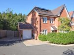 Thumbnail for sale in Sundew Place, Four Marks, Alton