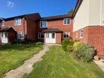 Thumbnail to rent in Langham Gardens, Taunton