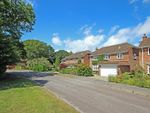 Thumbnail for sale in Rhinefield Close, Brockenhurst