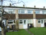 Thumbnail to rent in Pine View, Bridport