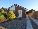 Thumbnail for sale in Bellward Close, Spital, Wirral