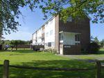 Thumbnail to rent in St. Thomas Court, Pagham, Bognor Regis