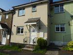Thumbnail to rent in Salts Meadow, East Taphouse, Liskeard