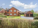 Thumbnail for sale in Buttons Lane, West Wellow, Romsey