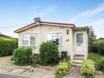 Thumbnail to rent in Oak Tree Park, St. Leonards, Ringwood
