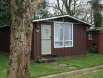 Thumbnail to rent in Harepath Hill, Seaton