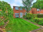 Thumbnail for sale in Heathgate, Hertford Heath, Hertford