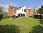 Thumbnail for sale in Broad Lane, Upper Bucklebury, Reading