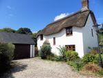 Thumbnail for sale in Woodthorne Cottage, West Putford, Holsworthy