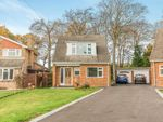 Thumbnail to rent in Locks Heath, Southampton, Hampshire