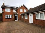 Thumbnail to rent in The Comp, Eaton Bray, Dunstable