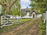 Thumbnail to rent in Blacksmiths Lane, Abbotsley, St. Neots