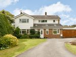 Thumbnail for sale in Shortsfield Close, Horsham, West Sussex