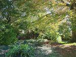 Thumbnail for sale in Summer Lane, Higher Brixham, Brixham