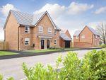 "Thumbnail to rent in ""Oakham"" at Plox Brow, Tarleton, Preston"