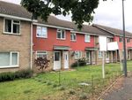Thumbnail to rent in Westminster Close, Ipswich