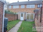 Thumbnail to rent in Jasmine Gardens, Bradwell, Great Yarmouth