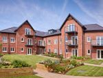 Thumbnail to rent in Lime Grove, Cheadle, Cheshire